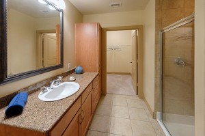 One Bedroom Apartments in Houston, Texas - Apartment Bathroom & Enclosed Shower with Closet View